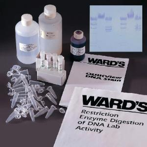 Ward's® Restriction Enzyme Digestion of DNA Lab Activity