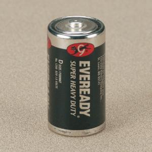 1.5 V Alkaline Batteries