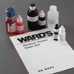 Ward's® Animal Tissue Staining Lab Activity