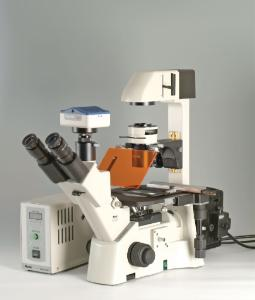Motic AE31 Inverted Microscope with Fluorescence