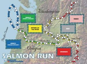 Salmon Run Game