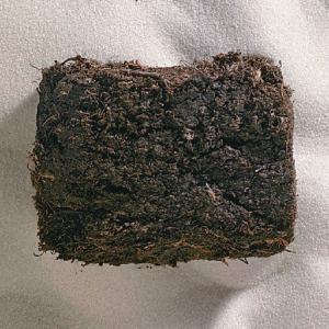 Ward's® Coal (Peat)
