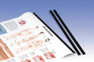 3B Scientific® Chart Slip Rods