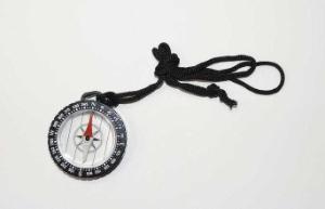 Liquid-Filled Magnetic Compass