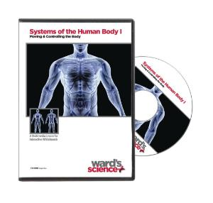Interactive Whiteboard Lessons: Systems of the Human Body I: Moving & Controlling the Body CD-ROM