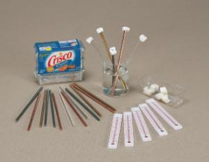 Conduction of Heat: The Crisco Experiment