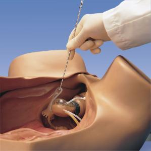 Gaumard® Gynecologic Simulator