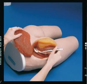 Life/form® I.M. Injection Simulator