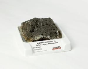 Ward's® Andesite (Porphyry)