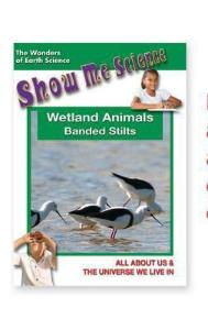 Show Me Science: Wetland Animals–Banded