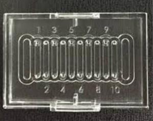 Rapi:Chip for PCR - 10 wells