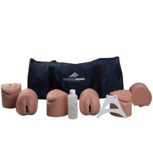 3B Scientific® Birthing Stages Trainer