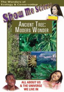 Show Me Science: Ancient Tree–Modern Wonder Video