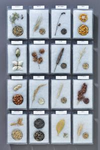 Commercial Crops Identification Mount Set