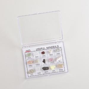 Ward's® Specimen Display Sets