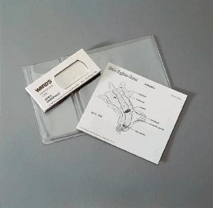 Amoeba proteus, Routine Explano-Mount™ Slide
