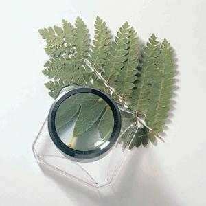 Deluxe Box Magnifier