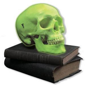 3B Scientific® Glow In The Dark Skull